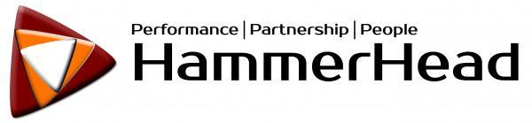Hammerhead (Pty) Ltd